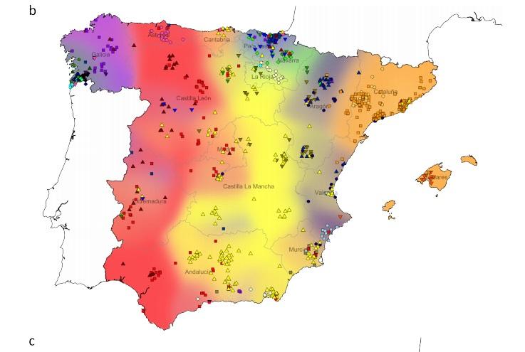 Os galegos teñen a maior porcentaxe de ADN africano